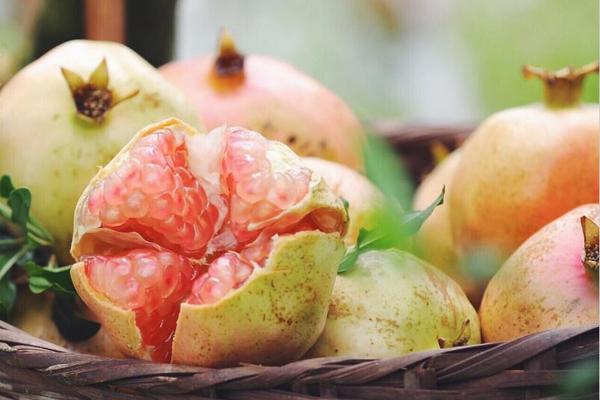 肠胃不好吃什么水果 好肠胃都是食物养出来的