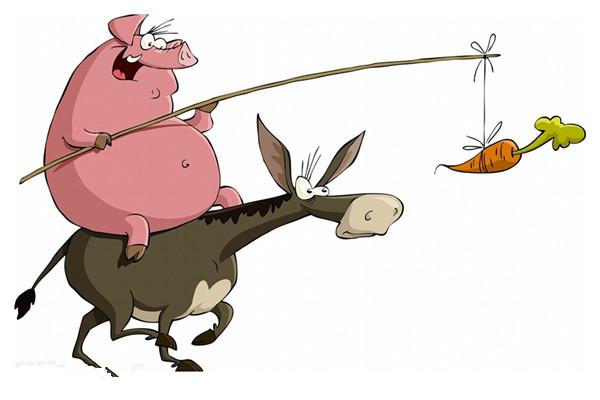 猪年只有354天 而鼠年有384天猪年那么短怎么够睡呀