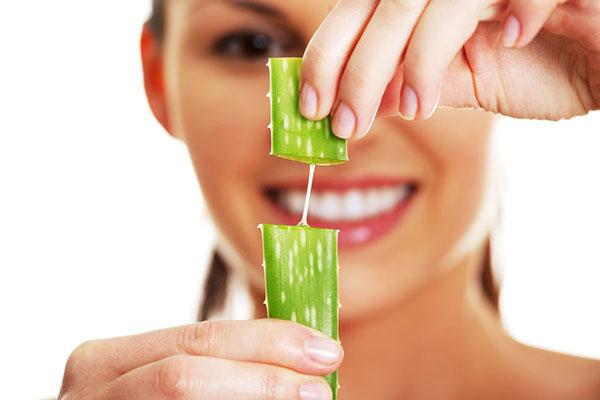 植物芦荟可以直接涂在脸上吗 自家种的芦荟可以擦脸吗